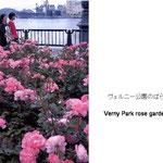 春、秋にバラいっぱいの公園に人が憩います。