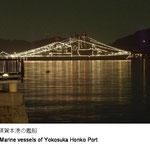 ヴェルニー公園から海上自衛隊や米軍の戦艦を見る事ができます。観艦式や年末などには美しくライトアップされます。