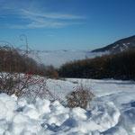 Costa di Castellaro