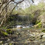 Cascatella sorgente torrente Stirone Rivarolo