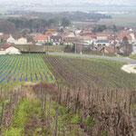 Pargny les Reims, à l'horizon l'agglomération Rémoise