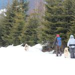 """Attun und Ponok begleiten die """"Schneeschühler""""."""