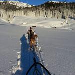 Ankunft bei der Alphütte.