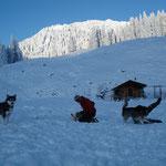 Wenn der Schnee zum Schlittenfahren nicht reicht, wird eben rumgetobt!
