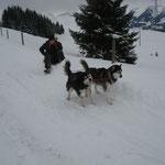 Fede hängte Uma und Niya auch noch schnell vor den Davoser.