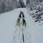 Nicht überall hatte es noch so viel Schnee, zum Teil litten die Beläge ganz schön!! ;-)
