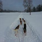 Super Trails im Jura!