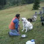 Ueli kennt die Hunde mit all ihren Maken.