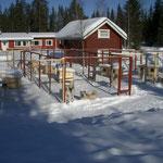 Unser Zuhause für die nächsten 7 Wochen. Röbi hat für alle meine Hunde Hütten und Zwinger gebaut!