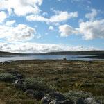 Scheinbar nie enden wollende Fjelllandschaften....