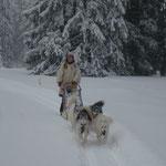 So solls sein. Viel Schnee und gute Trails!