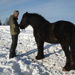 Pferde, Elias heimlicher Traum...