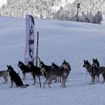 Unser Team im Winter