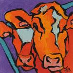 Vache 1303 9X9