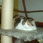 Püppi Gioia (+ 2006)