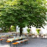 Unser schattiger Gastgarten mit altem Baumbestand
