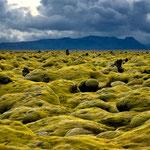 Lava Fields, Meðallandsvegur - Iceland