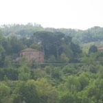 Orte - la collina antistante il paese