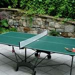 Haus Hildegard Garten: Tischtennis