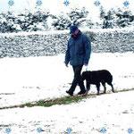 Begleithundeprüfung im Schnee