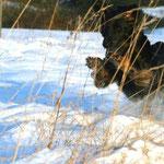 2009-Spaß im Schnee