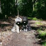 Mon-sha und Yeshi beim Waldspaziergang