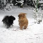 Oma Bya-ra, die Powerfrau, liebt es mit Enkel Yeshi im Schnee zu toben
