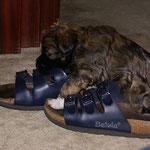 Nein, Femi, diese Schuhe passen dir nicht!