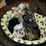 Nemi und Femi (jetzt: Stella) - Best friends
