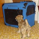 Fiona besucht Oldie Sammy