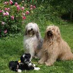 Mama Milka, Oma Bya-ra und die kleine Enya