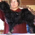 Yeshi beim Stehen üben auf dem Tisch für die Austellung - 5 Monate alt