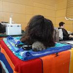 Yeshi wartet auf seinen Auftritt - Butzbach 29.3.15