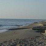 Und noch ein Bild vom Strand vor unserer Haustüre