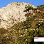 Blick vom Hochkampschneid kommend zu Gamsalmkopf