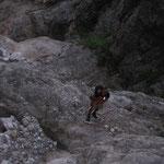 Zustieg durch ein steiles Bachbett