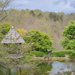 Arboretum Sedelle 2