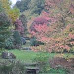 Arboretum Sedelle 3
