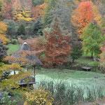 Arboretum Sedelle 5