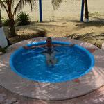 """Unser kleiner Pool auf dem Campingplatz """"Playa Luces"""""""