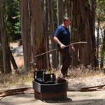 Nobbi beim Feuerholz sammeln