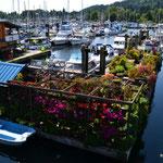 Hausboot mit Traumgarten am Hafen in Gibsons