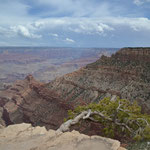 Grand Canyon am Nachmittag