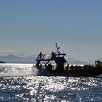 Unser Schwesterschiff auf der Rückfahrt