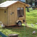 Glückliche Hühner und ihre Villa