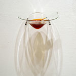 Material to all the internal capsule / glass, Pine resin, Iron, h15xw19 xd14.5cm, 2013