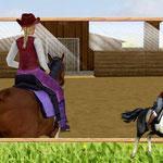 Mein Westernpferd