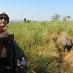 aus der Höhe sind die Rhinos ungefährlich