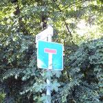 T auf blauem Grund