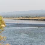 breiter Strom im Chitwan